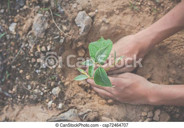 Concept of environmental conservation in the garden for children. - csp72464707