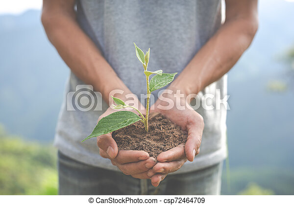 Concept of environmental conservation in the garden for children. - csp72464709