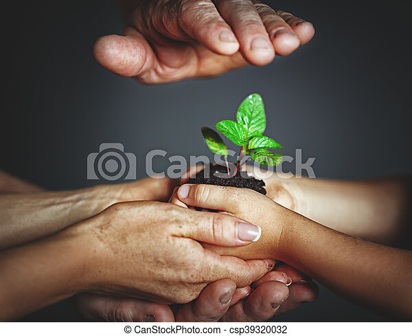 concept of family, kindness and parenting. Hands of mother and father and child holding a green sprout plant - csp39320032