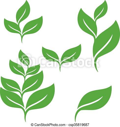 conception, feuilles, ensemble, vert, éléments - csp35819687