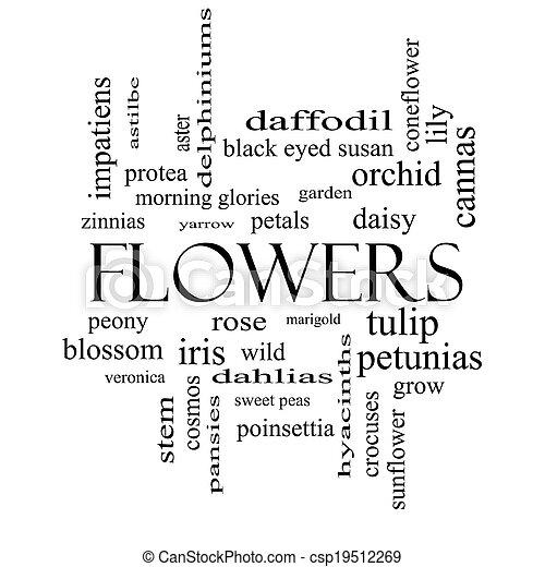 concepto, palabra, negro, flores blancas, nube - csp19512269