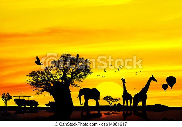 Conceptual african safari backround. - csp14081617