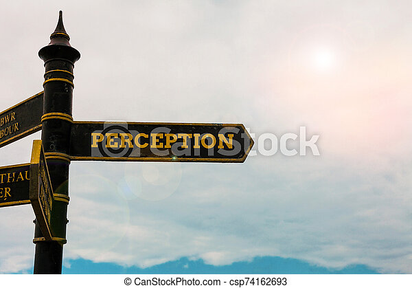 Conceptual hand writing showing Perception. Business photo text individuals organize and interpret their sensory impressions Road sign on the crossroads with blue cloudy sky in the background. - csp74162693