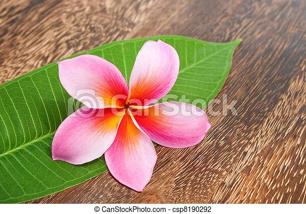 concetto, foglia, legno, wellness, struttura, tropicale, verde, plumeria, tavola, terme - csp8190292