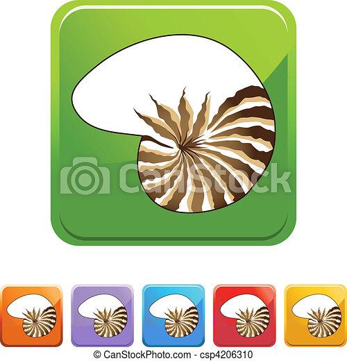 Concha de mar - csp4206310