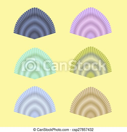 Coleccion de conchas marinas - csp27857432