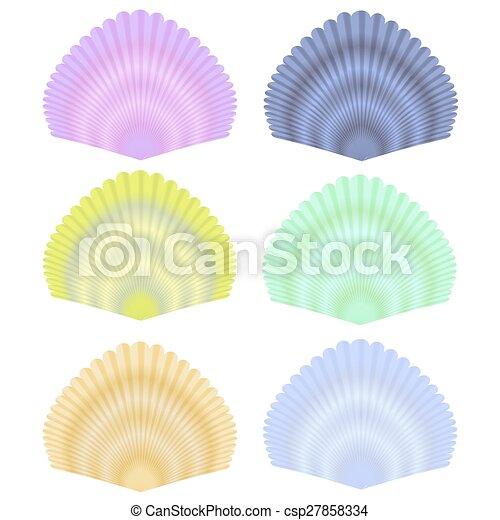Coleccion de conchas marinas - csp27858334