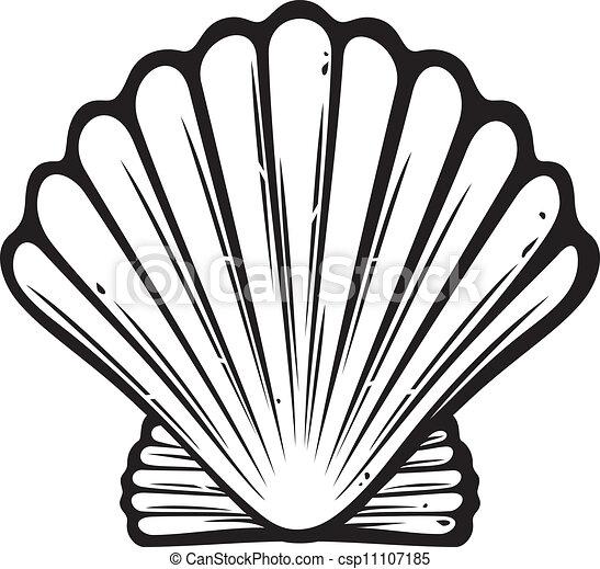 Concha de mar - csp11107185