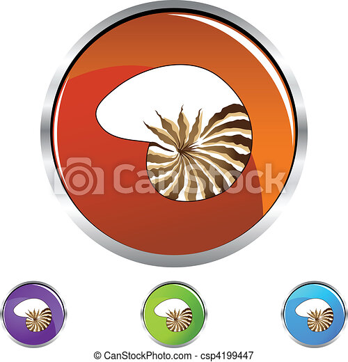 Concha marina - csp4199447
