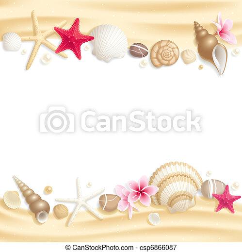 Encuadre de conchas - csp6866087