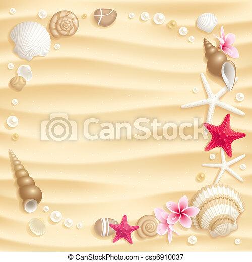 Conchas marinas - csp6910037