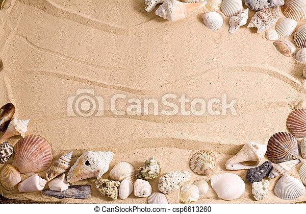 Un marco de playa de caracol - csp6613260