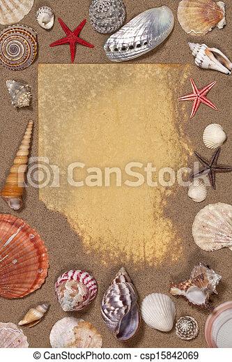 Frontera de conchas marinas - espacio para texto - csp15842069