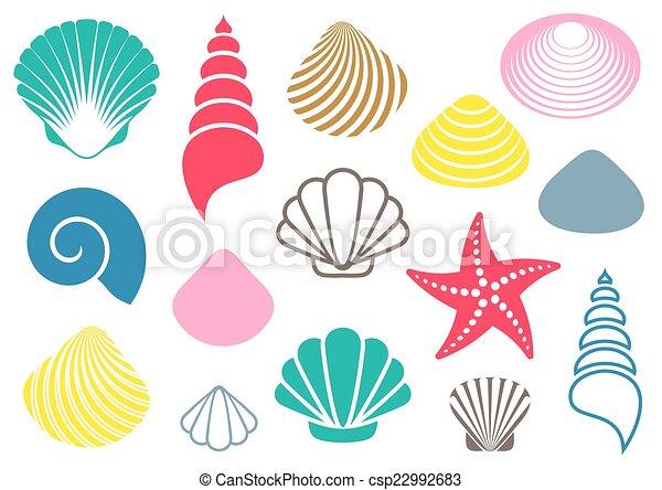 Conchas marinas - csp22992683
