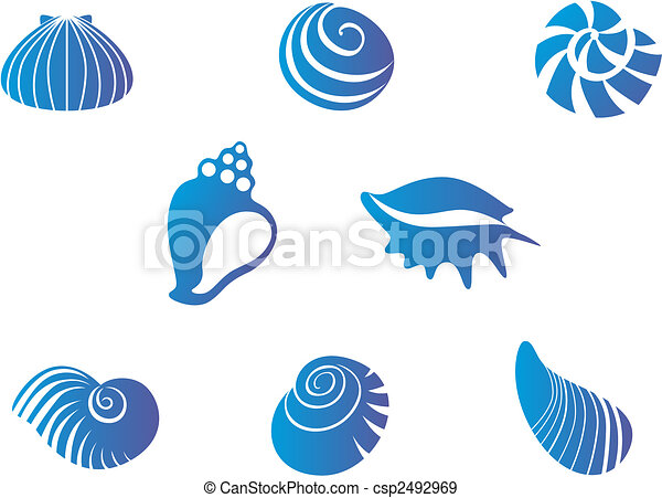 Conchas marinas - csp2492969