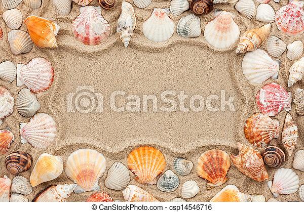 Conchas marinas, marco, arena.