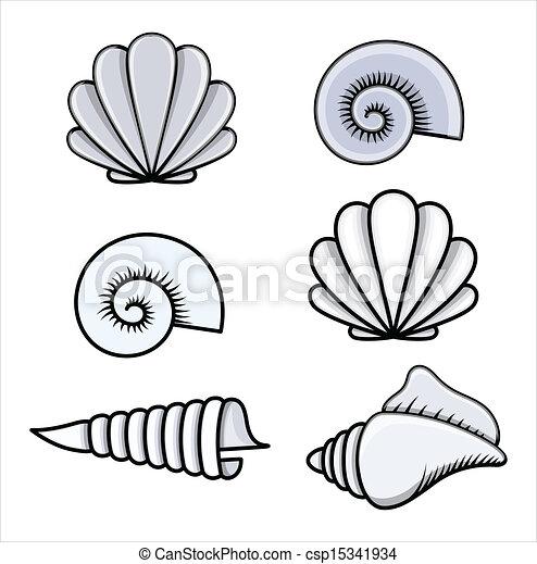 Conchas marinas, vector, -, caricatura. Arte, ilustración, dibujo ...