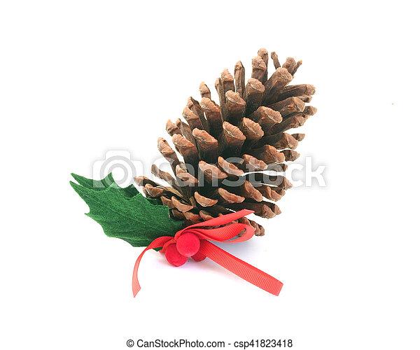 cone, pinho - csp41823418