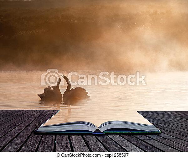 conept, acoplado, romanticos, imagem, cena, criativo, livro, par, cisnes, páginas - csp12585971
