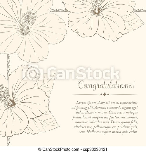 congratulations card design template with hibiscus flowers vector