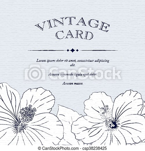 Congratulations Card Design Template With Hibiscus Flowers. Vector  Illustration.  Congratulations Card Template