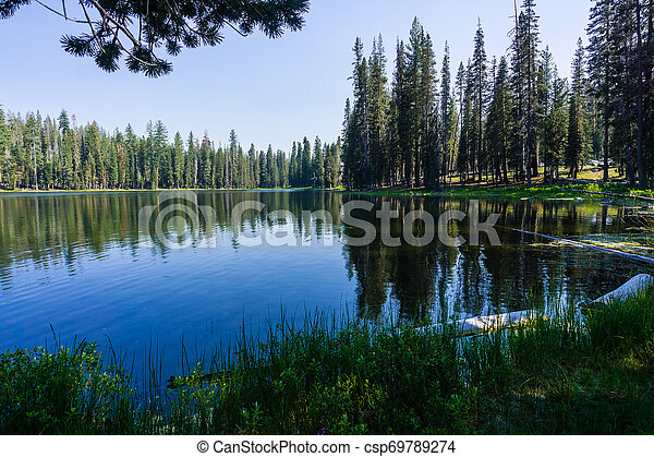 Coniferous trees forest reflected in the calm waters of Summit Lake, Lassen Volcanic National Park, Northern California - csp69789274