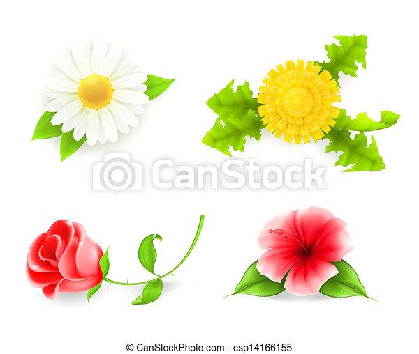 Flores listas, 10ps - csp14166155