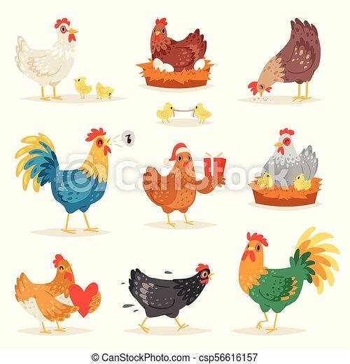 Pollo Vector De Dibujos Animados Gallina Y Gallo Enamorados