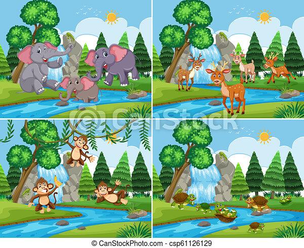 Una escena natural con animales - csp61126129