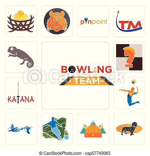 Equipo de bolos, dachshund, nórdico, fútbol, sirena, volley, katana, caballero de ajedrez, iconos de camaleón - csp57743063