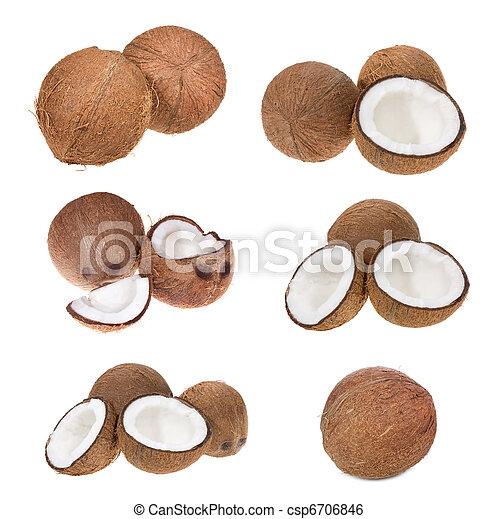conjunto, cocos - csp6706846