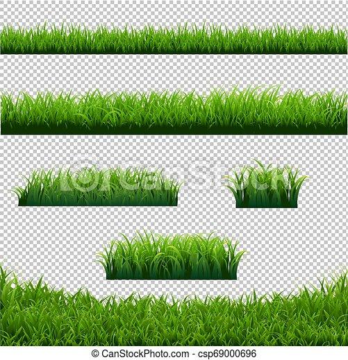 La hierba verde bordea un gran fondo transparente - csp69000696