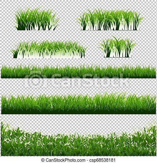 La hierba verde bordea un gran fondo transparente - csp68538181