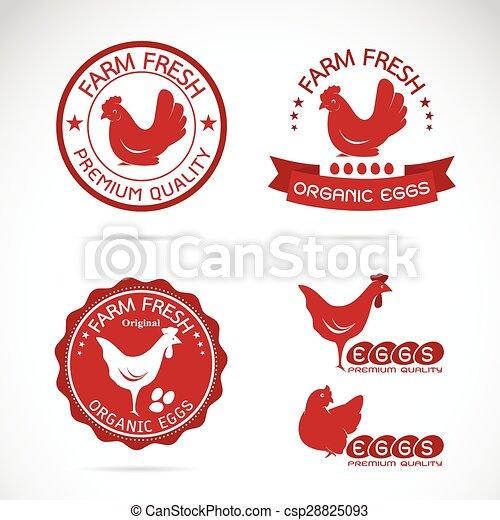 Una marca de vector de pollo y huevos en fondo blanco - csp28825093
