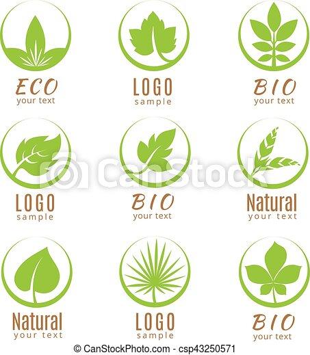Logotipo natural o etiquetas de ecología con hojas verdes aisladas en el fondo blanco. - csp43250571