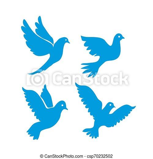 conjunto, señal, white., pájaros que vuelan, aislado - csp70232502
