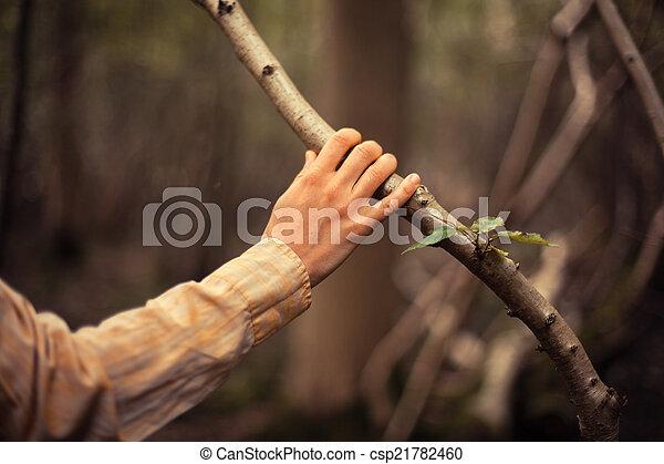 La joven está tocando una rama de árbol - csp21782460