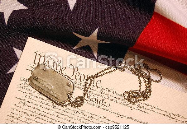 Constitution of USA  - csp9521125