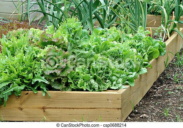 Container Garden - csp0688214