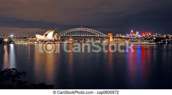 El horizonte nocturno de Sydney - csp0600972