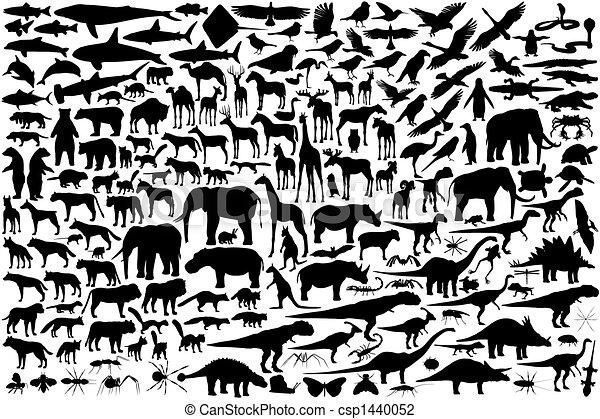 Esbozos de animales - csp1440052