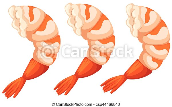 cooked shrimps on white background illustration rh canstockphoto com Shrimp Boil Clip Art Shrimp in the Sea Clip Art