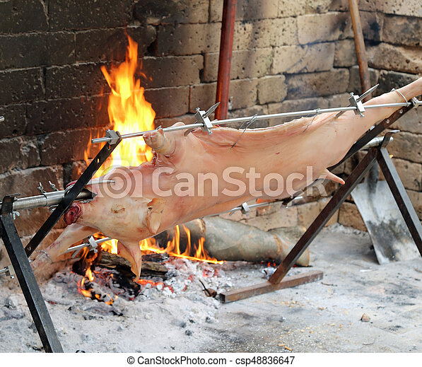 cooked whole pig on a spit with hot embers - csp48836647