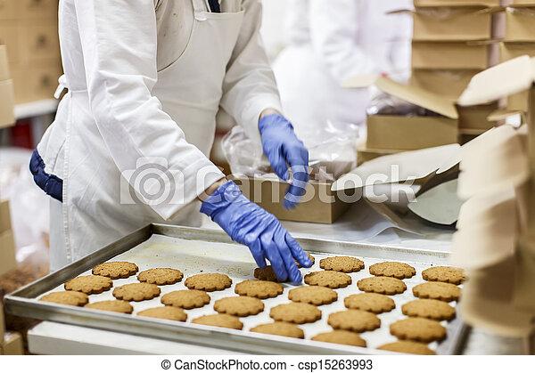 Cookies factory - csp15263993
