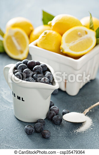 Cooking with lemons and blueberry - csp35479364