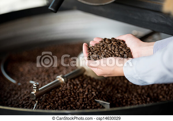 Cooling Container And Waitress's Hands Holding Coffee Beans - csp14630029