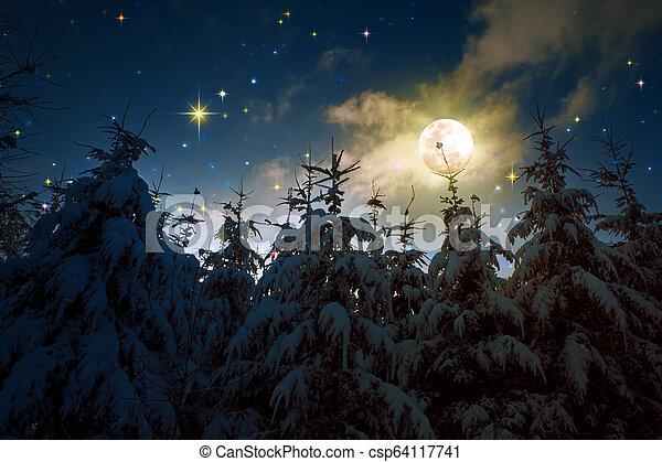 coperto, inverno, alberi abete, neve, pieno, paesaggio, moon. - csp64117741