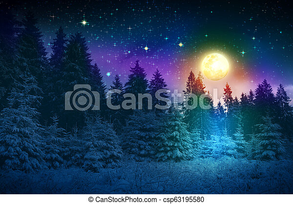 coperto, inverno, alberi abete, neve, pieno, paesaggio, moon. - csp63195580