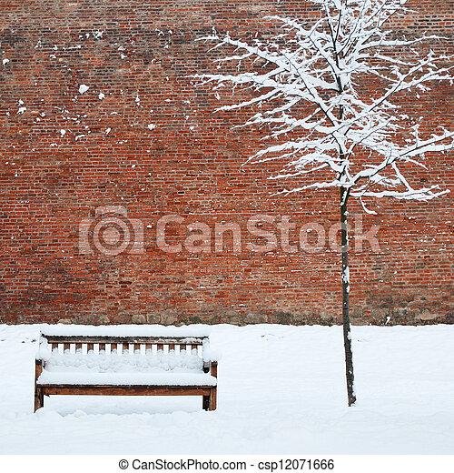coperto, solitario, albero, neve, panca - csp12071666