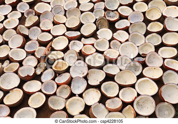 Copra Kerala Kokosnuss Trocknen Sun Drying Laden Kokosnuss